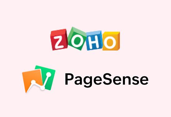 Zoho PageSense Analytics Tools