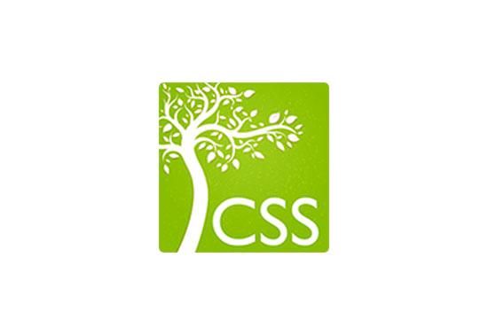 Parser Libraries CSS