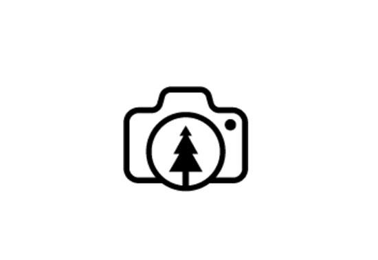 Free Videos, Free Nature Stock